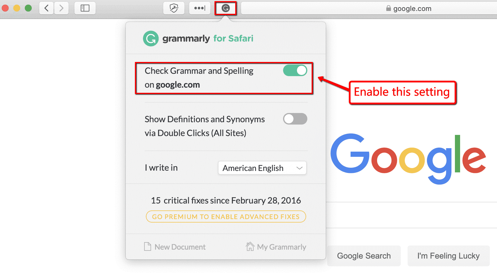 grammarly check grammer and spelling option