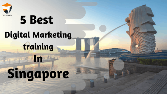 Digital Marketing Training Institutes in Singapore