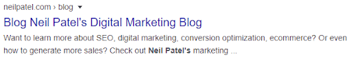 blog description of neilpatel