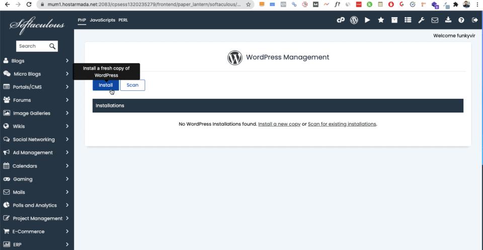 installing wordpress in hostarmada